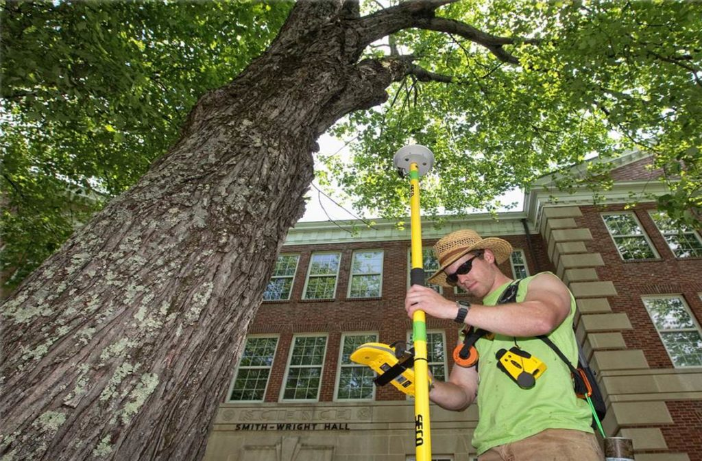 Arborist Consultations-Winter Haven FL Tree Trimming and Stump Grinding Services-We Offer Tree Trimming Services, Tree Removal, Tree Pruning, Tree Cutting, Residential and Commercial Tree Trimming Services, Storm Damage, Emergency Tree Removal, Land Clearing, Tree Companies, Tree Care Service, Stump Grinding, and we're the Best Tree Trimming Company Near You Guaranteed!