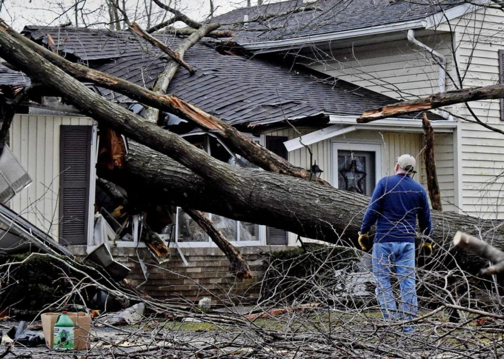 Storm Damage-Winter Haven FL Tree Trimming and Stump Grinding Services-We Offer Tree Trimming Services, Tree Removal, Tree Pruning, Tree Cutting, Residential and Commercial Tree Trimming Services, Storm Damage, Emergency Tree Removal, Land Clearing, Tree Companies, Tree Care Service, Stump Grinding, and we're the Best Tree Trimming Company Near You Guaranteed!