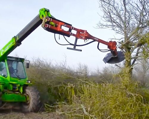 Tree Trimming Services-Winter Haven FL Tree Trimming and Stump Grinding Services-We Offer Tree Trimming Services, Tree Removal, Tree Pruning, Tree Cutting, Residential and Commercial Tree Trimming Services, Storm Damage, Emergency Tree Removal, Land Clearing, Tree Companies, Tree Care Service, Stump Grinding, and we're the Best Tree Trimming Company Near You Guaranteed!